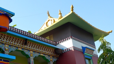 Yongey Terger Monestary in Bodhgaya, India. Do you notice the Bees nest?