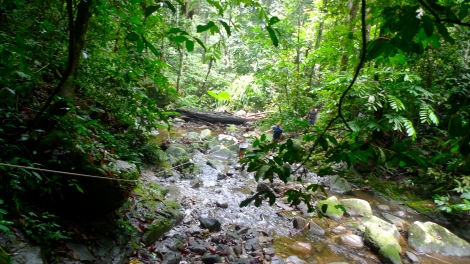 In order to see the beauty of Sg Enam waterfall, you need to walk through a lot of stream… It's wet and  slippery. You must be mindfulness! not to miss any step….