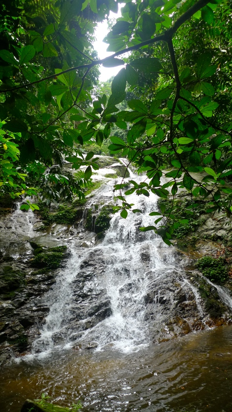 the beautiful waterfall… the water is so clear, so cooling… It deserve all our hard work.