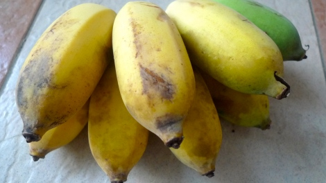 The banana tree at our backyard also ripen. Look at the healthy  banana, it's organic! Banana symbolize good wealth too.