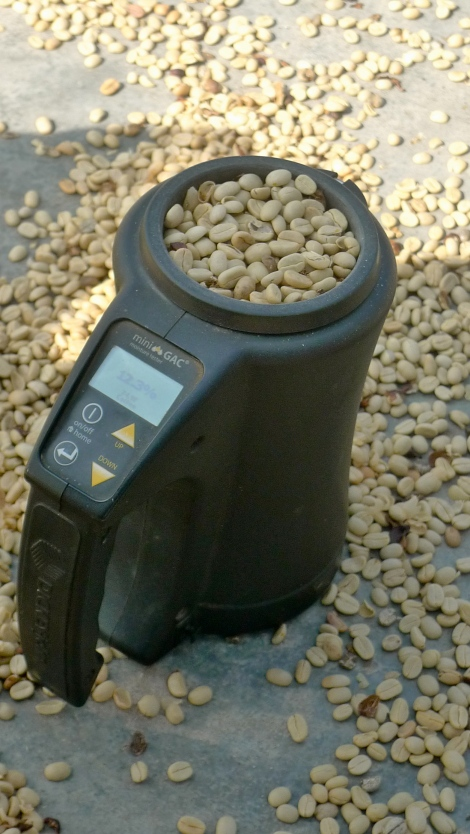 We are curious how many days needed to sun dry the coffee bean...