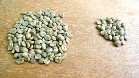 Good beans vs bad beans!