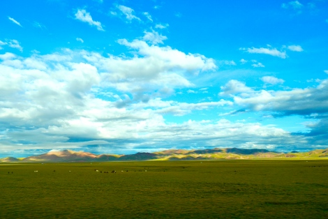 I enjoyed the unlimited view of blue sky and grass field… How free, light and happy!